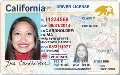 Buy California Driving License